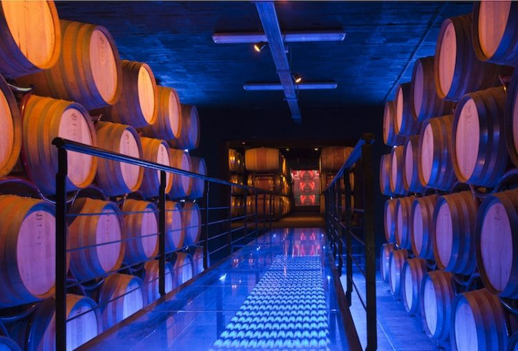 Wine Cellar Sensory Traveller Holidays