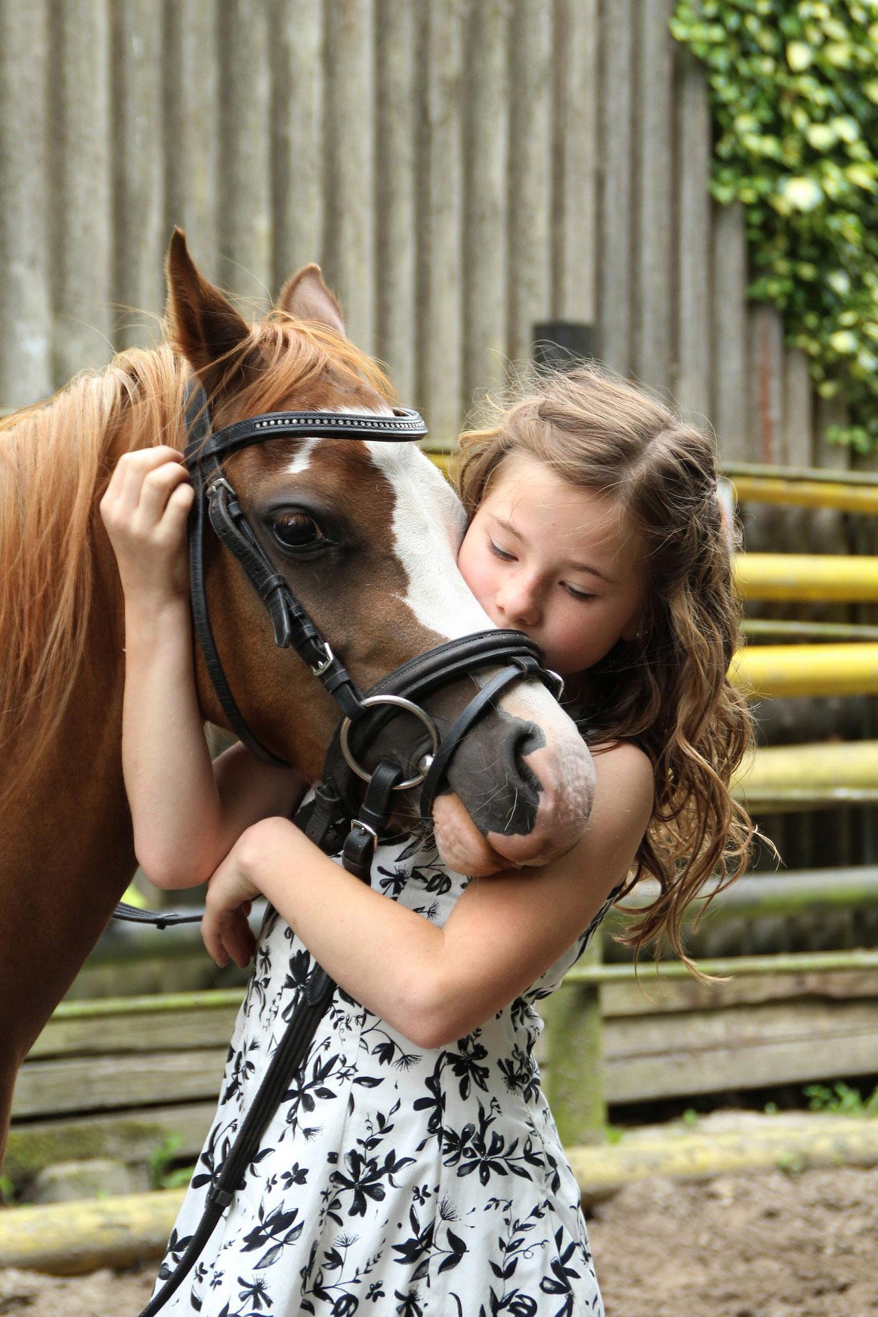 Horse Riding Sensory Traveller Holidays