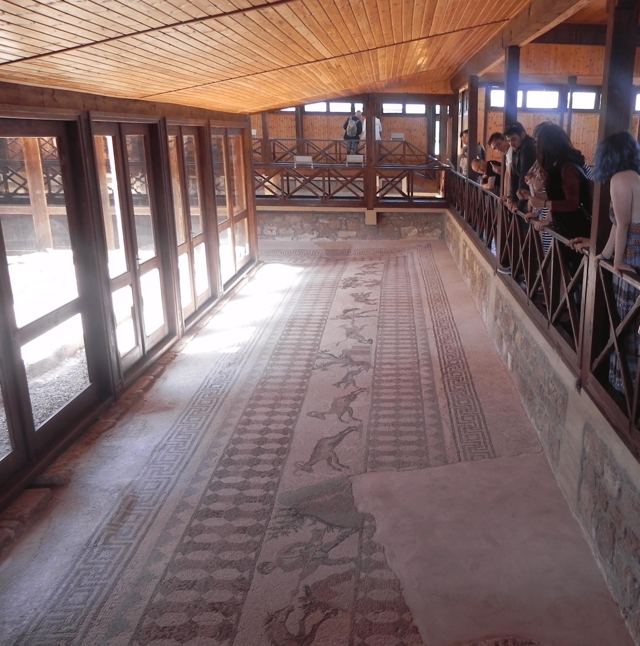 Paphos Mosaics Sensory Traveller Holidays