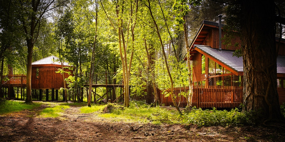 Cabins Sensory Traveller Holidays