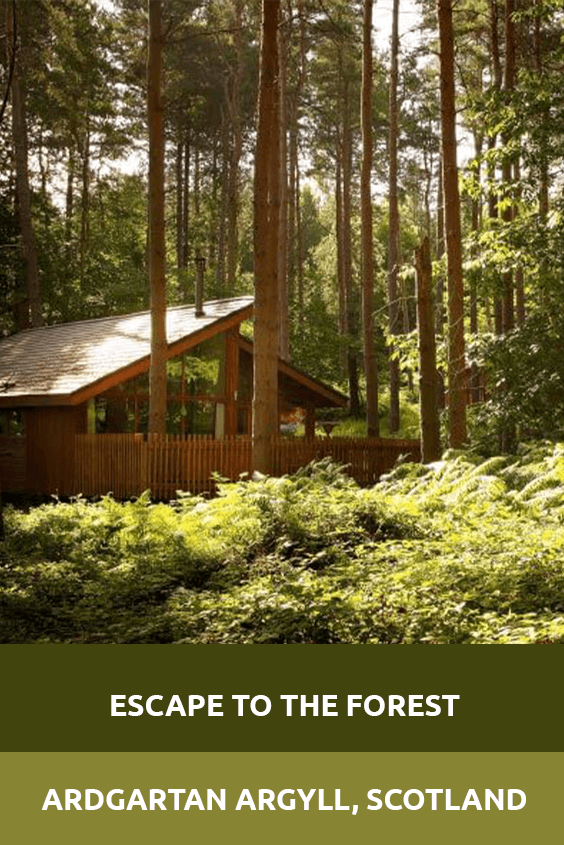 Escape to the Forest Ardgartan Argyll Sensory Traveller Holidays
